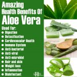 Amazing Health Benefits Of Aloe Vera