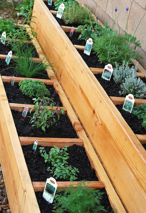 Garden Design Garden Design with How To Make A Cute Herb Garden