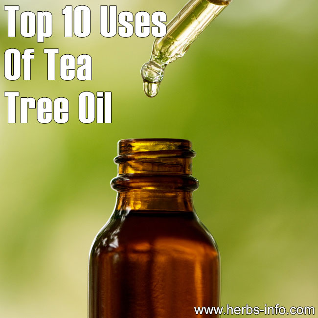Top 10 Uses Of Tea Tree Oil