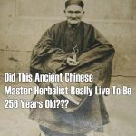 Did This Ancient Chinese MASTER HERBALIST Really Live To Be 256 Years Old?