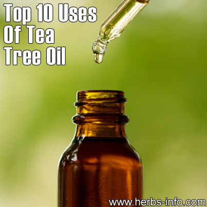 tea-tree-top-10