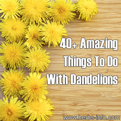 40 Amazing Things To Do With Dandelions
