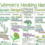 """A Woman's Healing Herbs"" Wall Chart From Liz Cook"