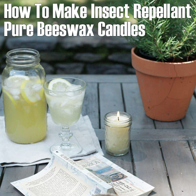 How To Make Insect Repellant Beeswax Candles