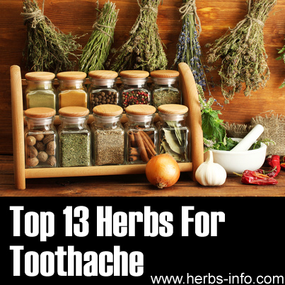 Top 13 Herbs For Toothache