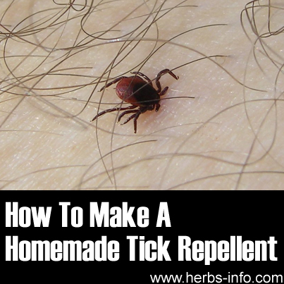 How To Make A Homemade Tick Repellant