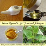 20 Home Remedies For Allergies
