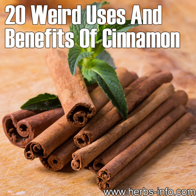 20 Weird Uses And Benefits Of Cinnamon