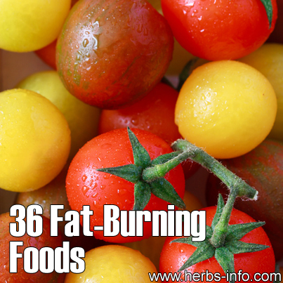 36 Fat Burning Foods
