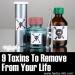 9 Toxins To Remove From Your Life