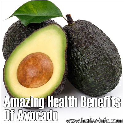 Amazing health benefits of avocado herbs info