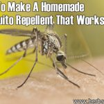 How to Make a Homemade Mosquito Repellent That Works
