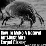 How To Make A Natural Anti-Dust Mite Carpet Cleaner
