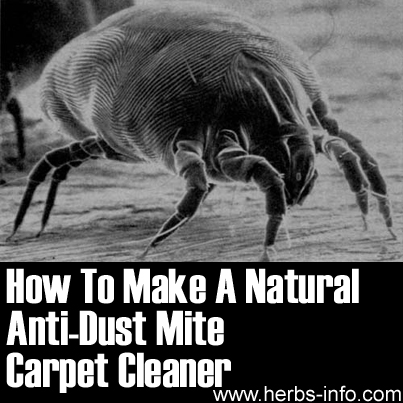 How To Make Natural Anti-Dust Mite Carpet Cleaner