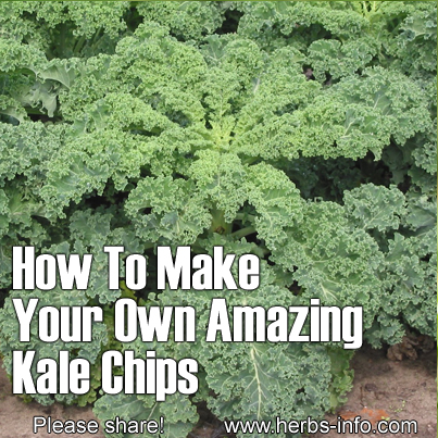 how to make your own kale chips