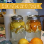 Top 20 Uses For Vinegar
