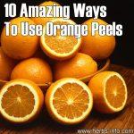 10 Amazing Ways To Use Orange Peels