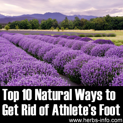 Top 10 Natural Ways to Get Rid of Athletes Foot