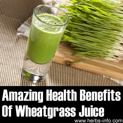 The Amazing Health Benefits Of Wheatgrass Juice