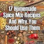 17 Homemade Spice Mix Recipes – And Why You Should Use Them