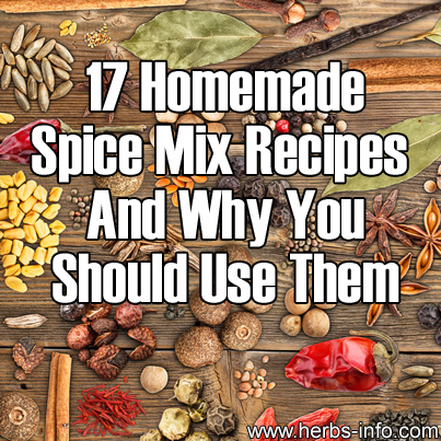 17 Homemade Spice Mix Recipes And Why You Should Use Them