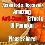 Scientists Discover Amazing Anti-Cancer Effects Of Pumpkin!