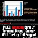 VIDEO: Amazing Cure Of Terminal Breast Cancer With Turkey Tail Fungus