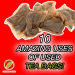 10 Amazing Uses Of Used Tea Bags
