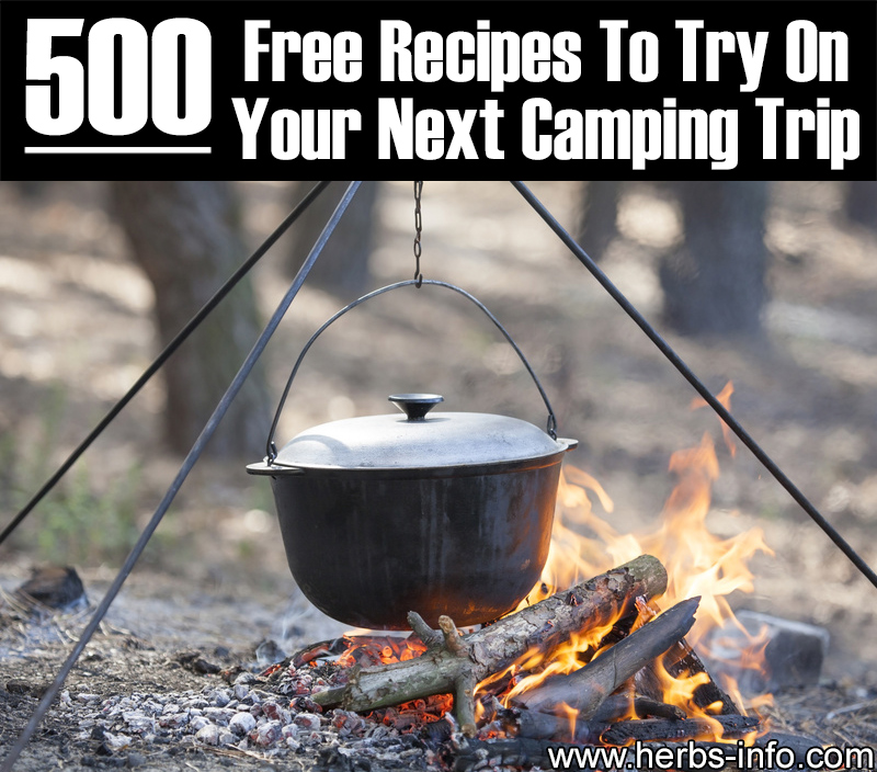 500 Free Recipes To Try On Your Next Camping Trip