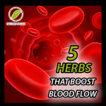 5 Herbs That Boost Blood Flow