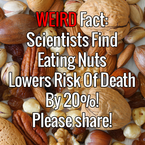Weird Fact - Scientists Find Eating Nuts Lowers Risk Of Death By 20 Percent
