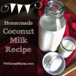 How To Make Your Own Yummy Coconut Milk