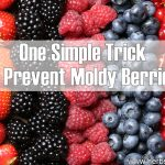 Ultra Simple Trick To Prevent Moldy Berries