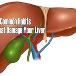 5 Common Habits That Damage Your Liver