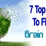 7 Top Tips To Fight Brain Aging