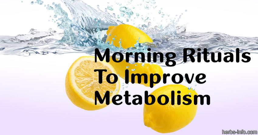 Morning Rituals To Improve Metabolism