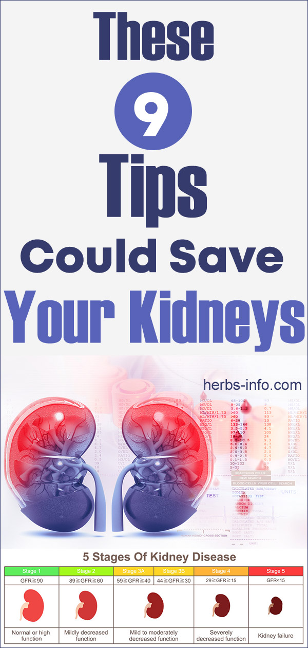 These 9 Tips Could Save Your Kidneys