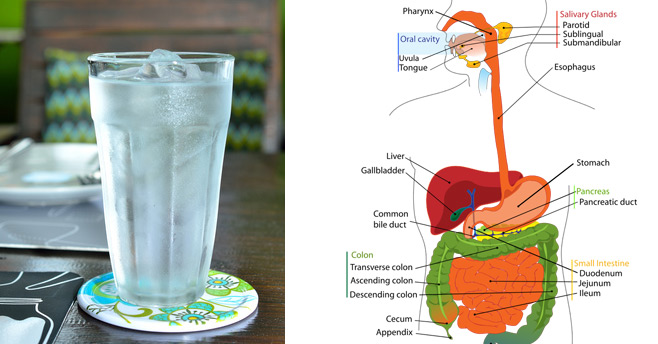 3 Unhealthy Habits That Cause Bloating, Indigestion & Acid Reflux