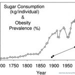 These 11 Mind Blowing Graphs Show Everything That Is Wrong With The Modern Diet