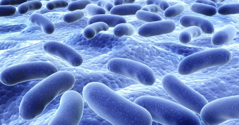 How Modern Life Is Destroying Your Gut Microbes - And 10 Things You Can Do About It