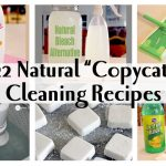 Top 22 Must-Have Copycat Cleaning Recipes