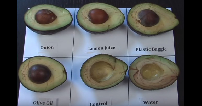 After I Saw This Video, My Avocados Never Turned Brown Again