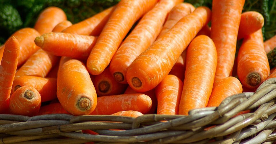 Carrot Compound Suppresses 70% Of Lung Cancer In Vivo And Reduces Risk In Humans