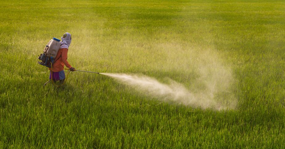 Fears As 93 Percent Of Americans Tested Positive For Glyphosate And Children Found To Have The Highest Levels