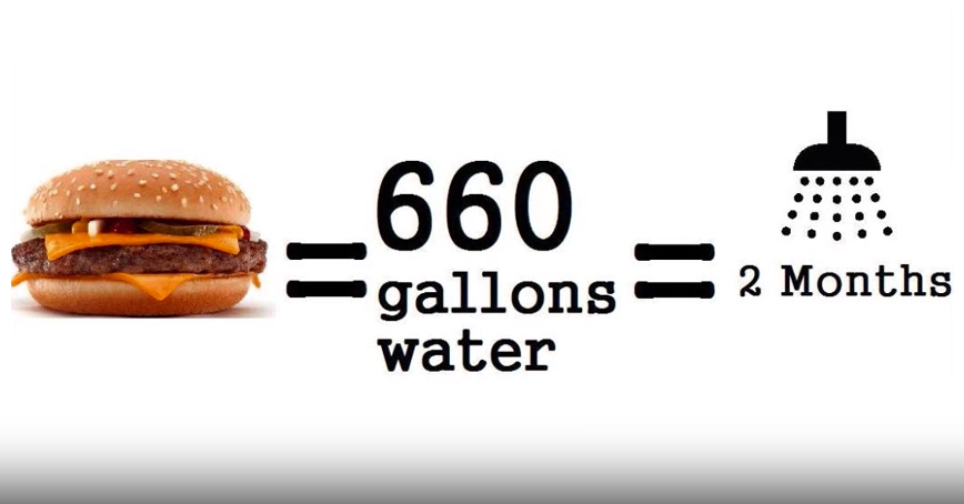 15 Shocking Facts About Your Burgers And Milk