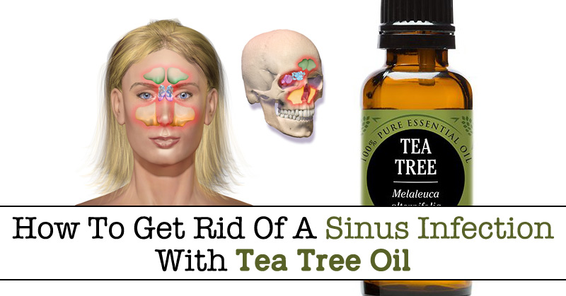 How To Get Rid Of A Sinus Infection With Tea Tree Oil