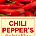 Chili Pepper's Painkilling Mechanism Uncovered