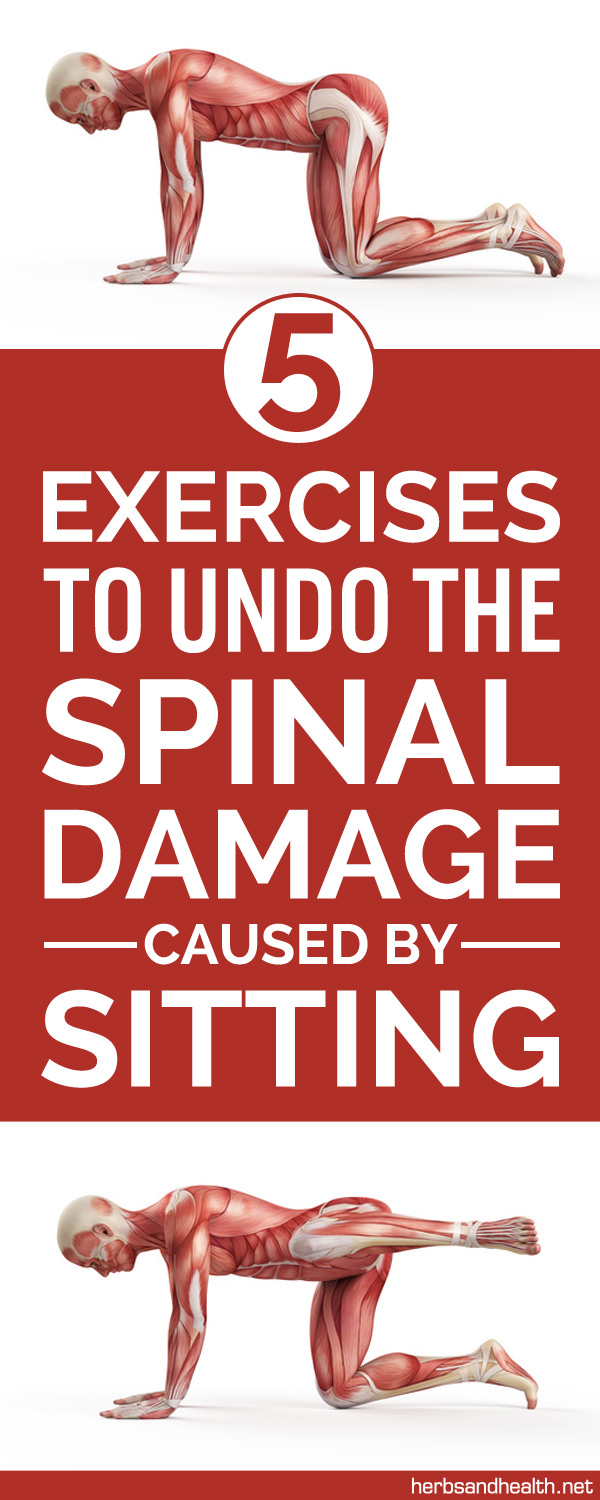 5 Exercises To Undo The Spinal Damage Caused By Sitting