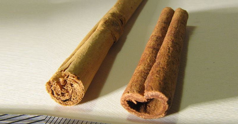 Is Your Cinnamon Real Or Fake?