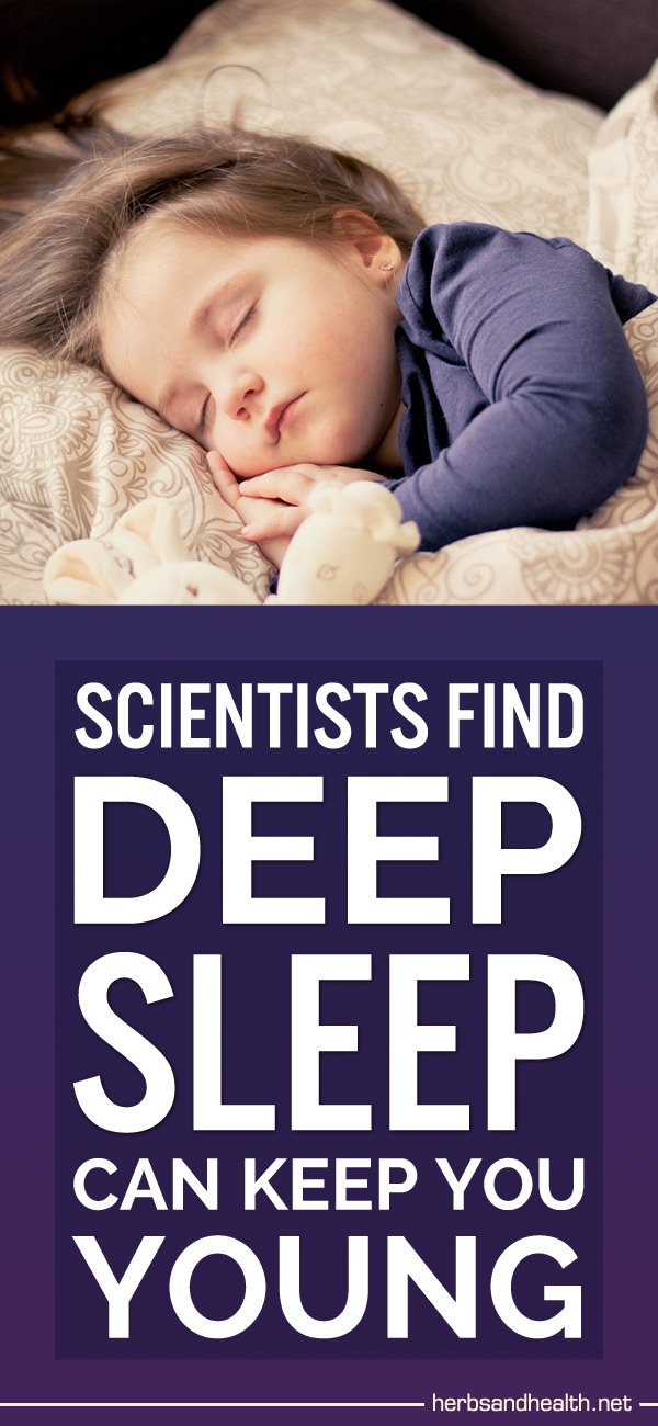 Scientists Find Deep Sleep Can Keep You Young